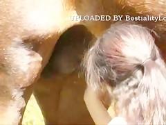 Penetrada por perro