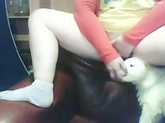 He fucks furry dog in her wet pussy