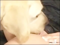 Blonde mature and black doggy