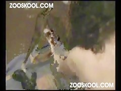 Zooskool Amateur Latin Lover