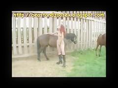 lucky pony